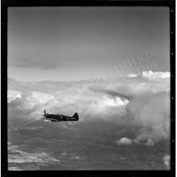 Spitfire MK XIX, 1944 by...